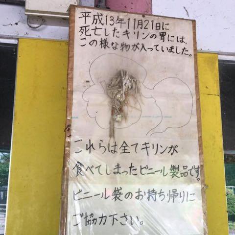 「動物は人を楽しませる道具じゃない」 胃にビニール、死んだキリン 宇都宮動物園.jpg