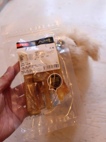 ビションフリーゼフントヒュッテこいぬ画像ビションフリーゼ子犬社会化性格血統チャンピオン犬東京ビションメス関東かわいいビションおとこのこ文京区出産情報ビション募集_656