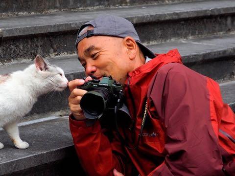 岩合光昭 いわごうみつあき 動物写真家 NHKBSプレミアム「岩合光昭の世界ネコ歩き」 写真集『猫にまた旅』 写真 画像 1.jpg