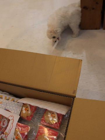 職人の味国産犬おやつ三矢コーポレーション無添加無着色保存料不使用犬おやつ職人の味季節限定商品クリスマス限定サンタフェイスクッキーサンタセット画像お正月商品おせちセット2018年招福セット_5