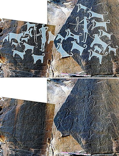 8000年以上、仲良いワン 最古の「飼い犬」の壁画?発見_1