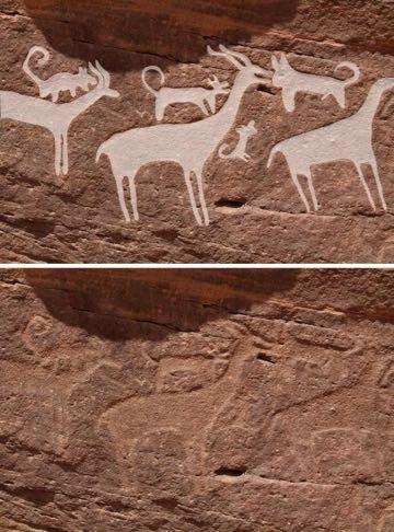 最古の犬の絵か? 狩りやペットの歴史にも一石 サウジアラビアで発見、紀元前5000〜紀元前8000年とも_4