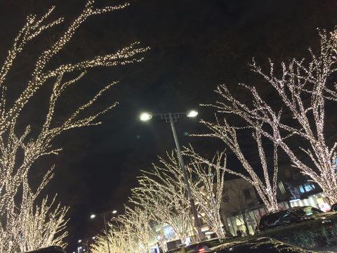 クリスマスイルミネーション2017 表参道 20171225 5