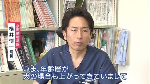 """【特集】高まる犬の""""輸血""""需要 「供血犬」が救う命_3.jpg"""
