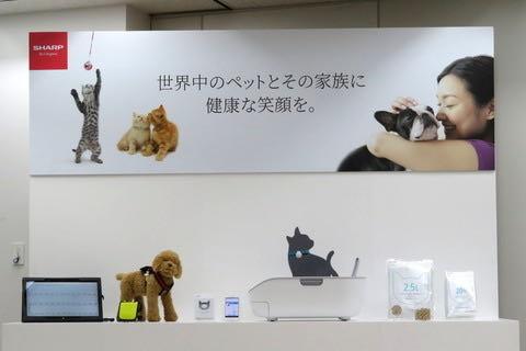シャープ、AIとIoTを活用した猫用ペットケアモニターを発表.jpg
