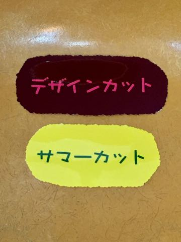 サッカーワールドカップ生地サッカー柄プリント生地国旗ブラジルドイツフランスイタリア日本サッカーボール生地柄画像 MADE IN JAPAN _ 5.jpg