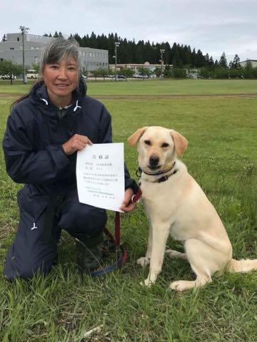 虐待されても人間が好き…青森の被虐待犬「ナッツ」が警察犬に、鼻の傷痕が問いかけるもの_2.jpg