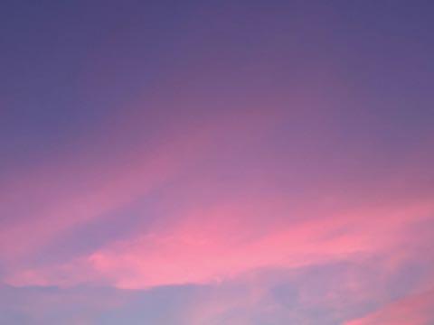 夏の夕焼け.jpg