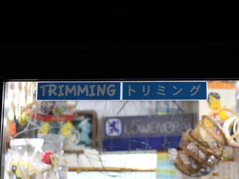 夏生地プリント生地花火朝顔アサガオあさがおリップル生地  MADE IN JAPAN カブトムシクワガタ柄画像アイスクリームUSAコットン TIMELESS TREASURES アイスキャンディ MADE IN USA _ 2.jpg