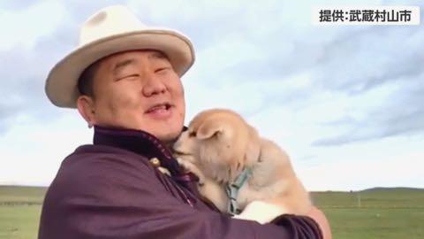 世界的ブーム!秋田犬の目線で観光案内_1.jpg