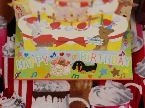 ダックスフントミニチュアトリミング都内フントヒュッテ駒込ダックスサマーカット画像ダックスブラックタン東京hundehutte犬シャンプー_8.jpg