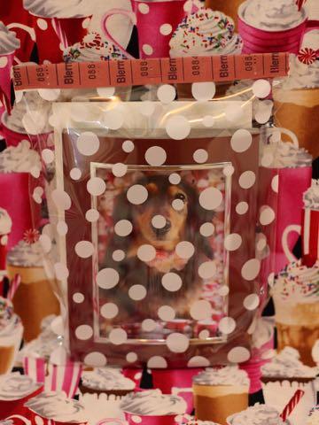 ダックスフントミニチュアトリミング都内フントヒュッテ駒込ダックスサマーカット画像ダックスブラックタン東京hundehutte犬シャンプー_9.jpg