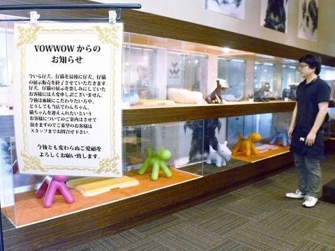 犬猫展示販売中止、ペットショップが決断 飼育放棄減を願い.jpg