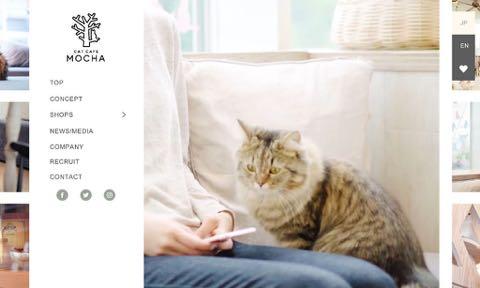 「みんな泣きながら働いてた」 猫カフェ「MOCHA」で猫パルボウイルス発生、店員が悲痛な訴え 関東全店臨時休業へ _ 03.jpg