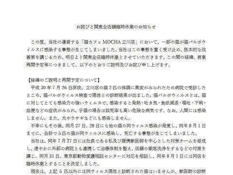 「みんな泣きながら働いてた」 猫カフェ「MOCHA」で猫パルボウイルス発生、店員が悲痛な訴え 関東全店臨時休業へ _ 05.jpg