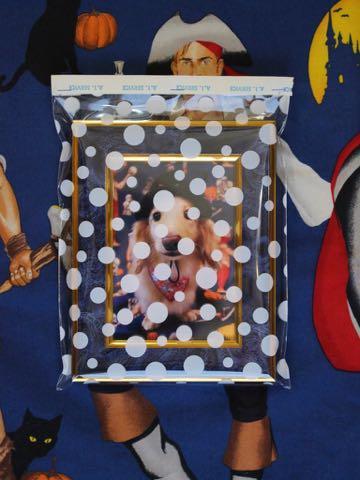 ダックスフントミニチュアトリミング都内フントヒュッテ駒込犬の歯みがき画像文京区歯垢歯石除去歯磨きゼオライトデンタルケア犬温泉東京_147.jpg