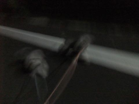 トイプードルトリミング都内フントヒュッテ駒込トイプーカット画像文京区犬歯磨き歯垢歯石除去ゼオライトデンタルケア東京ペットホテル犬ハーブパック効果_376.jpg