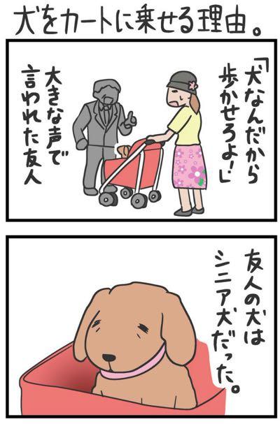 犬をカートに乗せていた女性が「歩かせろ」と怒鳴られる漫画 理由知ってほしい…作者が訴え_1.jpg