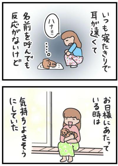 犬をカートに乗せていた女性が「歩かせろ」と怒鳴られる漫画 理由知ってほしい…作者が訴え_2.jpg