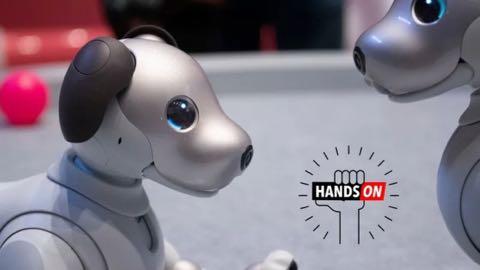 「まだ子犬だから」っていうのは違くない?:ソニーaiboのハンズオン.jpg