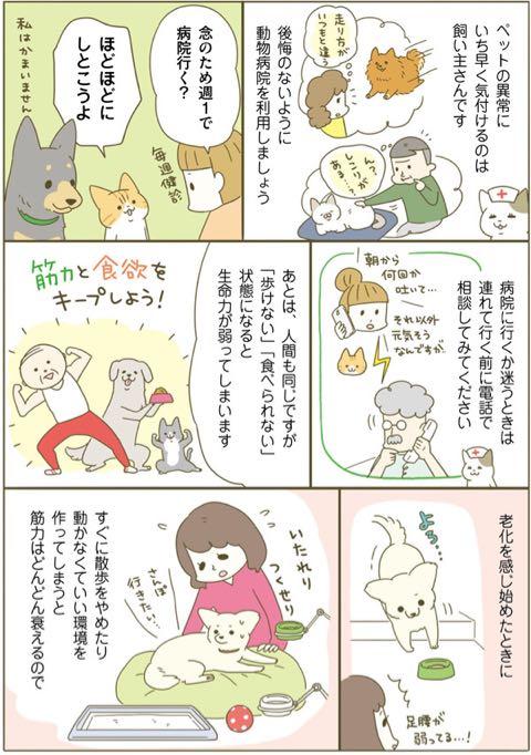 ネコちゃんに教わる、シニアペットと暮らす心得<病気、介護、保険編> 4.jpg