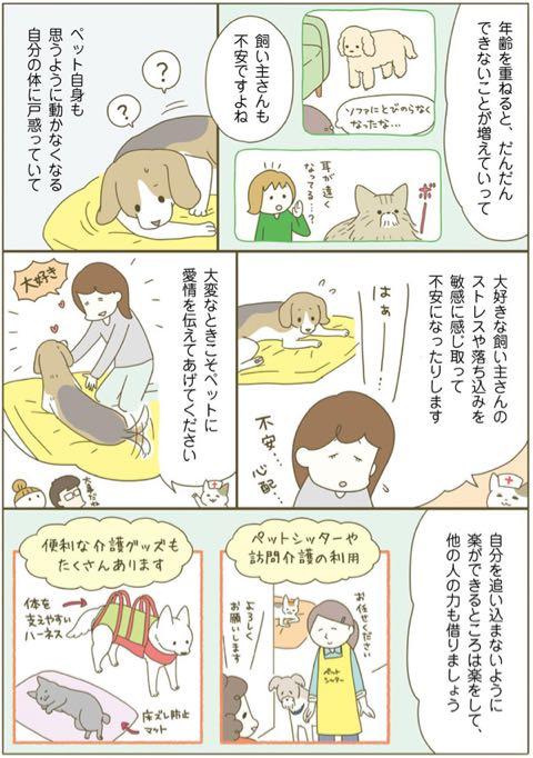 ネコちゃんに教わる、シニアペットと暮らす心得<病気、介護、保険編> 6.jpg