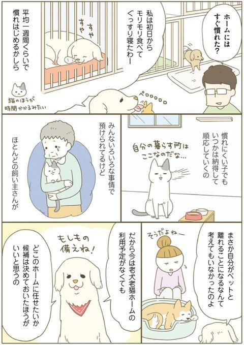 ネコちゃんに教わる、シニアペットと暮らす心得<お別れ編> 4.jpg