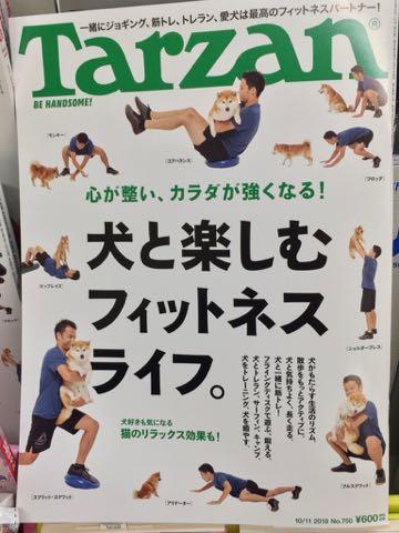 Tarzan ターザン 犬と楽しむフィットネスライフ もっとアクティブに愛犬と暮らそう 一緒にジョギング 筋トレ フライングディスク 休日は犬を連れて山へ海へ トレラン サーフィン 愛犬は最高のフィットネスパートナーだ.jpg