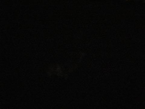 ウェルシュ・コーギー・ペンブロークこいぬ情報フントヒュッテウェルシュコーギーペンブローク子犬画像コーギーしっぽ付き尻尾付きしっぽつき断尾していないコーギー出産情報性格子犬の社会化コーギー家族募集中 Welsh Corgi Pembroke _ 1203.jpg