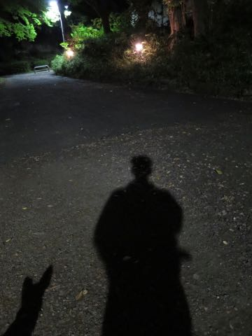 ウェルシュ・コーギー・ペンブロークこいぬ情報フントヒュッテウェルシュコーギーペンブローク子犬画像コーギーしっぽ付き尻尾付きしっぽつき断尾していないコーギー出産情報性格子犬の社会化コーギー家族募集中 Welsh Corgi Pembroke _ 1562.jpg