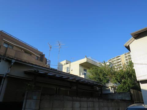 シーサー 置き方 シーサーの置き方 シーサー 意味 何 シーサー 置物 沖縄 シーサーとは 意味 獅子 沖縄語 画像 1.jpg