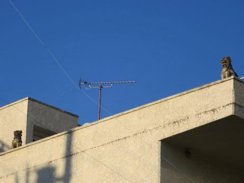 シーサー 置き方 シーサーの置き方 シーサー 意味 何 シーサー 置物 沖縄 シーサーとは 意味 獅子 沖縄語 画像 2.jpg
