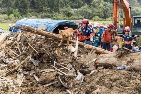 犬の殺処分ゼロ目指す日本最大NPOに捜査が入った理由 命守るため覚悟の全頭引き受け_2.jpg