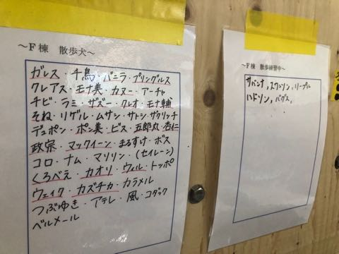 犬の殺処分ゼロ目指す日本最大NPOに捜査が入った理由 命守るため覚悟の全頭引き受け_7.jpg