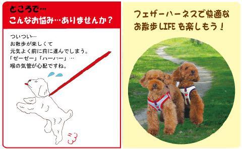 LAMZY ソフトフェザーハーネス 画像 ラムジー フェザー ハーネス 気管支への負担軽減 気管支炎 気管虚脱 犬 人気 ハーネス 販売 フントヒュッテ 東京 3.jpg