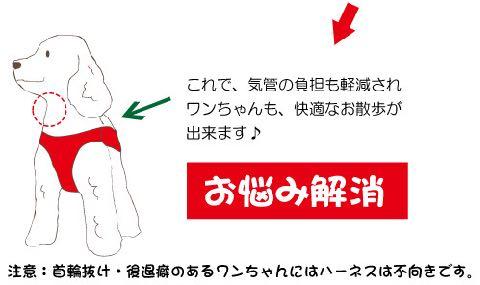 LAMZY ソフトフェザーハーネス 画像 ラムジー フェザー ハーネス 気管支への負担軽減 気管支炎 気管虚脱 犬 人気 ハーネス 販売 フントヒュッテ 東京 5.jpg