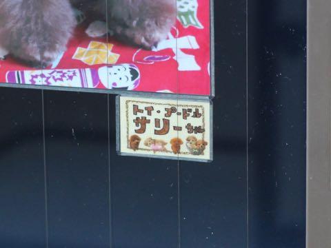 お正月 生地 和柄 凧揚げ コマ回し お手玉 花札 竹馬 羽根つき だるま落とし 折り紙 日本の風景 プリント生地 柄 ファブリック 画像 写真撮影 背景 トリミングサロン フントヒュッテ 2019年元旦 _ 26.jpg