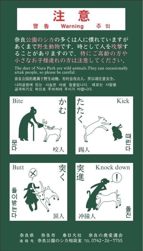 奈良公園のシカによるけが人が過去最悪 2018年度、奈良公園のシカで200人以上が負傷 けが理由の6割以上が「鹿せんべい」での餌付け 7.jpg