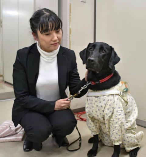 「盲導犬協会で差別」視覚障害者の元職員提訴.jpg