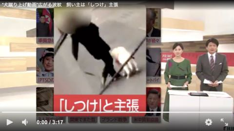 """""""犬蹴り上げ動画""""広がる波紋 飼い主は「しつけ」主張.jpg"""