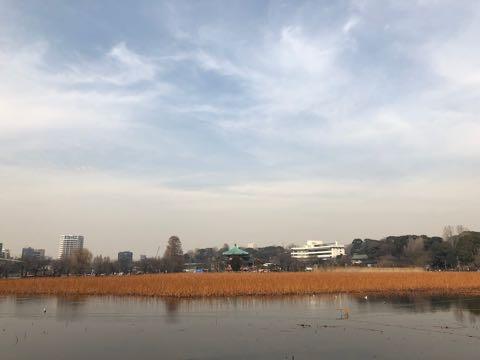 上野公園 2019 1.jpg