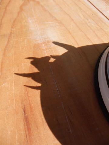 Wonderful Kitchen ワンダフルキッチン 評判 味 Wonderful Japan P-ball ピーボール 無添加 無着色 保存料不使用 国産 犬のおやつ 東京 フントヒュッテ 画像 国産とりガムトサカ _ 4.jpg
