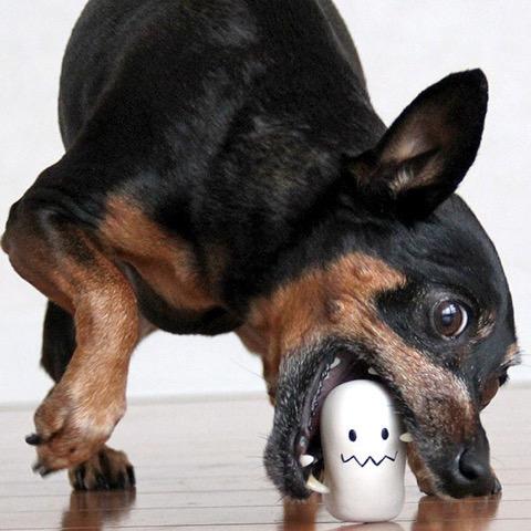 iDog&iCat アイドッグアイキャット ラテックスTOY 犬のおもちゃ 東京 フントヒュッテ 画像 ハロウィン Halloween 限定 ゴーストラテックスTOY _ 6.jpg