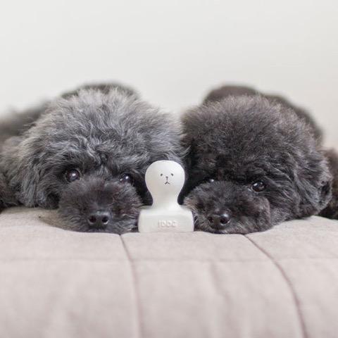 iDog&iCat アイドッグアイキャット ラテックスTOY 犬のおもちゃ 東京 フントヒュッテ 画像 お餅 コマメ ラテックスTOY _ 9.jpg