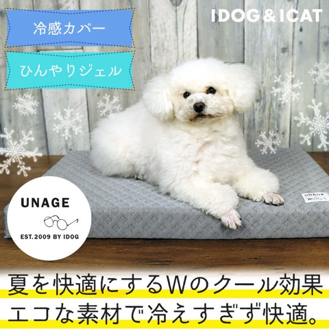 iDog&iCat アイドッグアイキャット 犬猫ベッド 冷感カバー ひんやりジェル 夏を快適に 暑さ対策 犬 低反発マット 東京 フントヒュッテ 画像 犬用ベッド  _ 6.jpg
