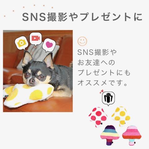 iDog&iCat アイドッグアイキャット iToy 国産ペット用おもちゃ POPな柄のキノコ型おもちゃ カシャカシャ入りでワンコも夢中に 東京 フントヒュッテ 画像 犬用おもちゃ _ 7.jpg