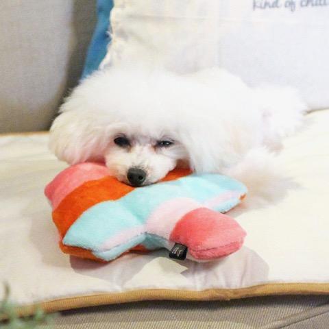 iDog&iCat アイドッグアイキャット iToy 国産ペット用おもちゃ POPな柄のキノコ型おもちゃ カシャカシャ入りでワンコも夢中に 東京 フントヒュッテ 画像 犬用おもちゃ _ 13.jpg