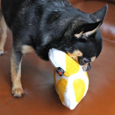 iDog&iCat アイドッグアイキャット iToy 国産ペット用おもちゃ POPな柄のキノコ型おもちゃ カシャカシャ入りでワンコも夢中に 東京 フントヒュッテ 画像 犬用おもちゃ _ 16.jpg