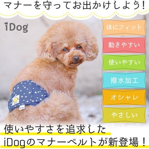 iDog&iCat アイドッグアイキャット マナーベルト スターボーダー 東京 フントヒュッテ 画像 犬 マナーバンド マーキング防止 _ 2.jpg