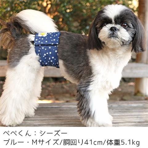 iDog&iCat アイドッグアイキャット マナーベルト スターボーダー 東京 フントヒュッテ 画像 犬 マナーバンド マーキング防止 _ 9.jpg